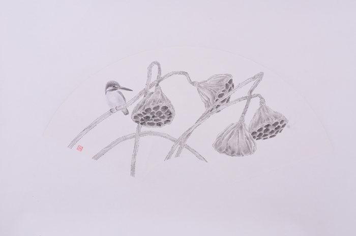 莲蓬工笔图片手绘