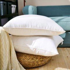 65x65cm欧枕芯(鹅毛或化纤)图片
