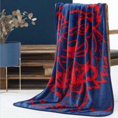 KENZO/高田贤三 虎头经典柔软毯 情侣毯 盖毯 保暖毯 140*190cm  100*140cm (灰/蓝)图片
