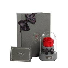 JoyFlower七夕情人节礼物进口永生花礼盒生日礼物十二星音乐星座玫瑰花图片