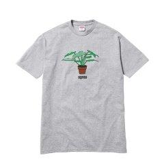 Supreme 17FW Plant Tee 小sup logo 植物盆栽花盆 短袖T恤图片