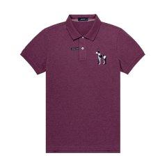 HAZZYS/哈吉斯2018夏季新款T恤衫男时尚简约纯色男士短POLO衫ASTZE08BE09图片