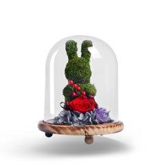 JoyFlower情人节礼物进口永生花礼盒生日礼物苔藓小熊玻璃罩礼盒系列-8色可选图片