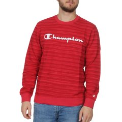 【包邮包税】Champion/Champion 19春夏 男士条纹棉质混纺LOGO标识长袖T恤卫衣图片