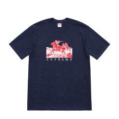 Supreme 19SS Riders Tee 稚鹰展翅 骑士开枪 LOGO 短袖T恤图片