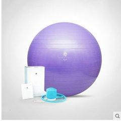 HATHA 哈他瑜伽球加厚防爆健身瑜珈初学者儿童运动女孕妇分娩助产球(S-55cm、M-65cm、L-75cm))图片