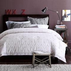 Fantti/芬缇 床上用品新雪丽暖绒活性生态磨毛印花冬被全棉加厚春秋被双人被芯图片