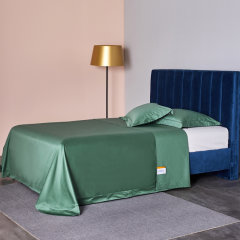 GeleiStory/GeleiStory【英伦家居】梦想家系列100支匹马棉家居床上用品四件套图片