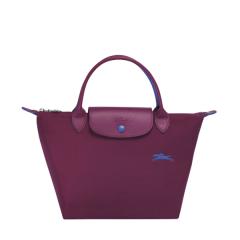 Longchamp/珑骧70周年纪念款 女士LE PLIAGE系列织物尼龙短柄可折叠手提包1621刺绣图片