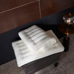 Fantti/芬缇 床上用品玻尿酸大豆提花枕单人护颈枕双人家用立体纤维枕图片