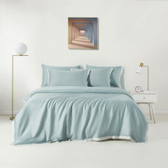 Downia 床上用品 床品套件天丝纯色 床单款/床笠款 四件套-冰蓝图片