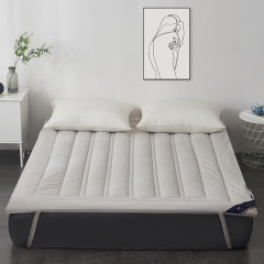 Fantti/芬缇 床上用品全棉美式立体羊毛混合加厚床垫防滑床褥图片