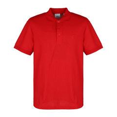 BURBERRY/博柏利21春夏男士短POLO衫短袖T恤 8014003图片
