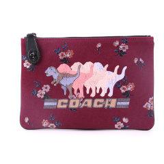 COACH/蔻驰  手拿包 男女通用 帆布尼龙材质 恐龙/绵羊图案 零钱包收纳包化妆包手包图片