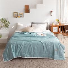 Fantti /芬缇 床上用品25度新氧澳洲羊毛夏被可水洗夏被空调被夏凉被夏季单双人薄被图片