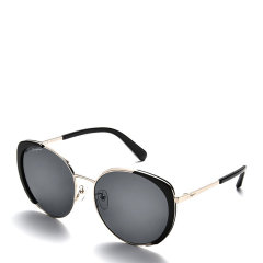 Salvatore Ferragamo/菲拉格慕 女士圆形墨镜眼镜太阳镜 248SA图片