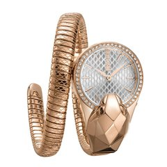 JUST CAVALLI/JUST CAVALLI 蛇形表欧美时尚潮流螺旋精钢个性手表女 ins火爆 jc女表图片