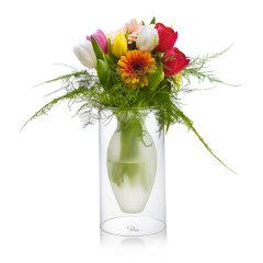 德国PHILIPPI 半透明优质玻璃空中花瓶 创意家居摆件图片