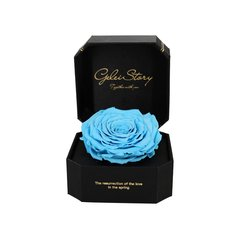 GeleiStory/GeleiStory厄瓜多尔巨型玫瑰礼盒送女友情人节礼物宝贝对不起香槟色 年货节 店铺特惠图片