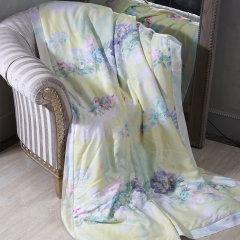 YOLANNA/意•欧恋纳 意大利品牌高端床品YTS5040水洗桑蚕丝夏被图片
