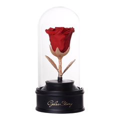 GeleiStory/GeleiStory十二星座音乐旋转系列 伴手礼 送闺蜜 生日礼物 星座礼物  年货节 店铺特惠图片