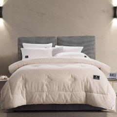 Careseen/康尔馨 五星级酒店冬被 加厚保暖全棉磨毛被芯图片
