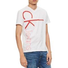 【包税】Calvin Klein/卡尔文·克莱因  男士竖款logo印花V领休闲短袖T恤 417120P图片
