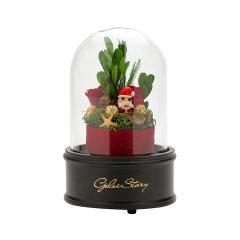 GELEISTORY圣诞节永生花圣诞礼物限量版送女友 圣诞旋转音乐礼盒图片