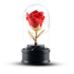 JoyFlower情人节进口永生花礼盒生日礼物美女与野兽带灯/旋转音乐盒玻璃罩图片