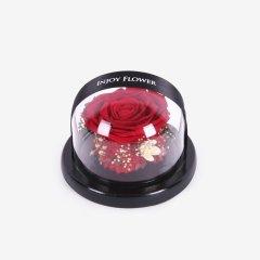 魔法球-永生玫瑰摆件(全国包邮)图片