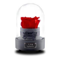 JoyFlower情人节进口永生花礼盒生日礼物十二星音乐星座玫瑰花图片